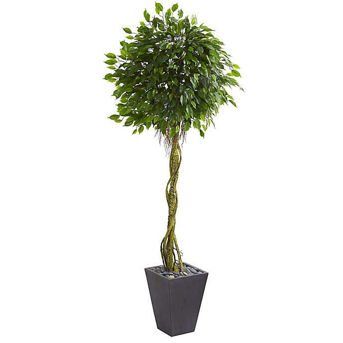 Alternate image 1 for Nearly Natural 6-Foot Ficus Tree in Slate Planter