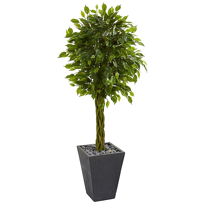 Alternate image 1 for Nearly Natural 5-Foot Braided Ficus Tree in Slate Planter