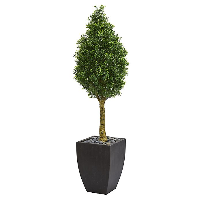 Alternate image 1 for Nearly Natural 5-Foot Boxwood Cone Topiary Tree in Slate Planter