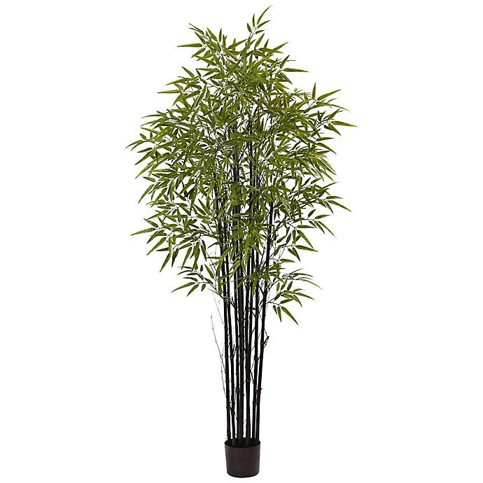 Alternate image 1 for Nearly Natural 6-Foot Bamboo Tree in Black Pot