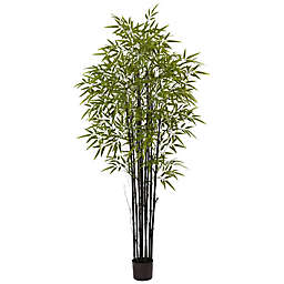 Nearly Natural 6-Foot Bamboo Tree in Black Pot