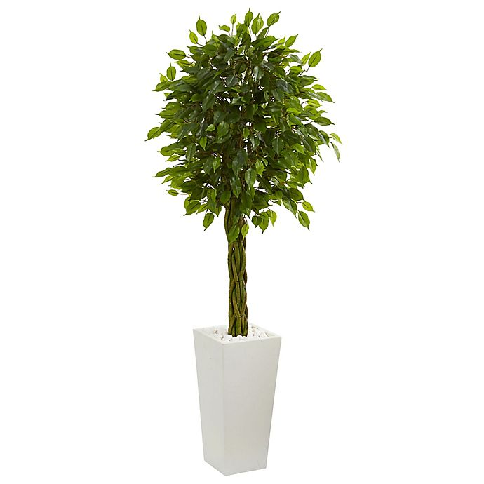 Alternate image 1 for Nearly Natural 5-Foot Braided Ficus Tree in White Tower Planter
