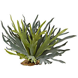 Nearly Natural 21-Inch Staghorn Fern (Set of 2)