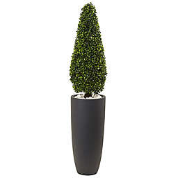 Nearly Natural 50-Inch Boxwood Cone Topiary Tree in Grey Cylinder Planter