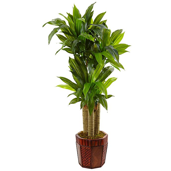 Alternate image 1 for Nearly Natural 4.5-Foot Cornstalk Dracaena Tree in Octagonal Bamboo Planter