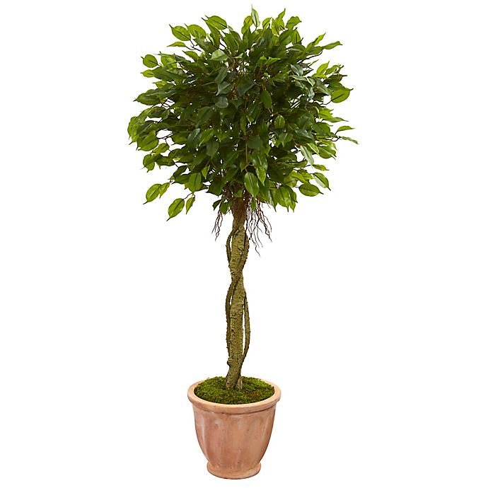 Alternate image 1 for Nearly Natural 4.5-Foot Ficus Artificial Tree