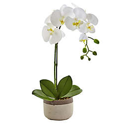 Nearly Natural 19-Inch Phalaenopsis Orchid with Ceramic Pot