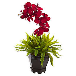 Nearly Natural 20-Inch Orchid and Birdsnest Plant in Hexagonal Wood Planter