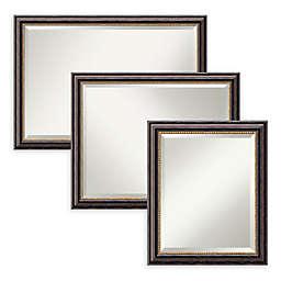 Amanti Art Tuscan Rustic Bathroom Mirror in Black