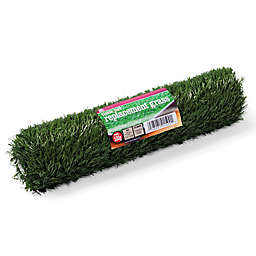 Prevue Pet Products Replacement Turf for the Tinkle Turf System for Dogs