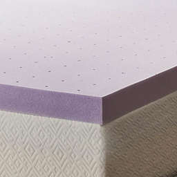 Lucid Memory Foam 3-Inch Twin XL Mattress Topper in Purple