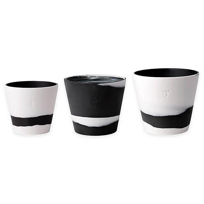 Alternate image 1 for Wedgwood® Burlington Pot in Black/White