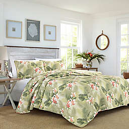 Tommy Bahama® Tropical Orchid Reversible Quilt Set in Green
