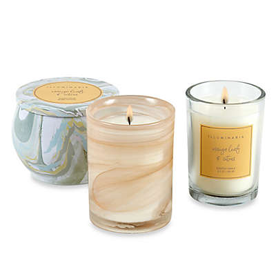 Illuminaria Mango Leaf and Citrus Candle Collection