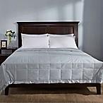 Puredown Cotton Sateen Lightweight Full/Queen Down Blanket in Blue