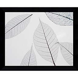 Amanti Art Sheer Leaves 11-Inch x 9-Inch Framed Wall Art