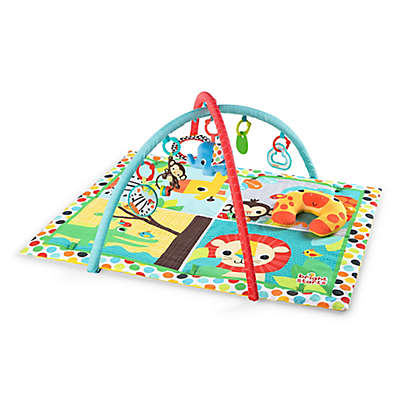 Bright Starts™ Room for Fun Activity Gym
