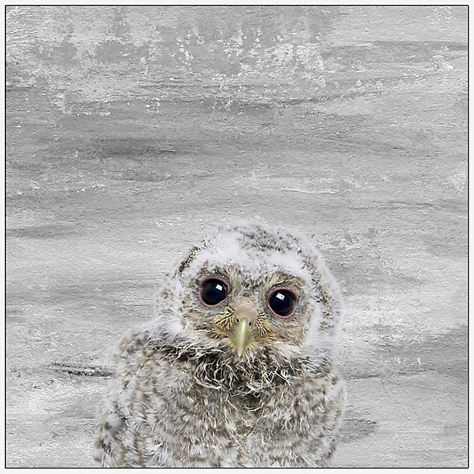 Alternate image 1 for Marmont Hill Snow Owl 12-Inch x 12-Inch Canvas Wall Art