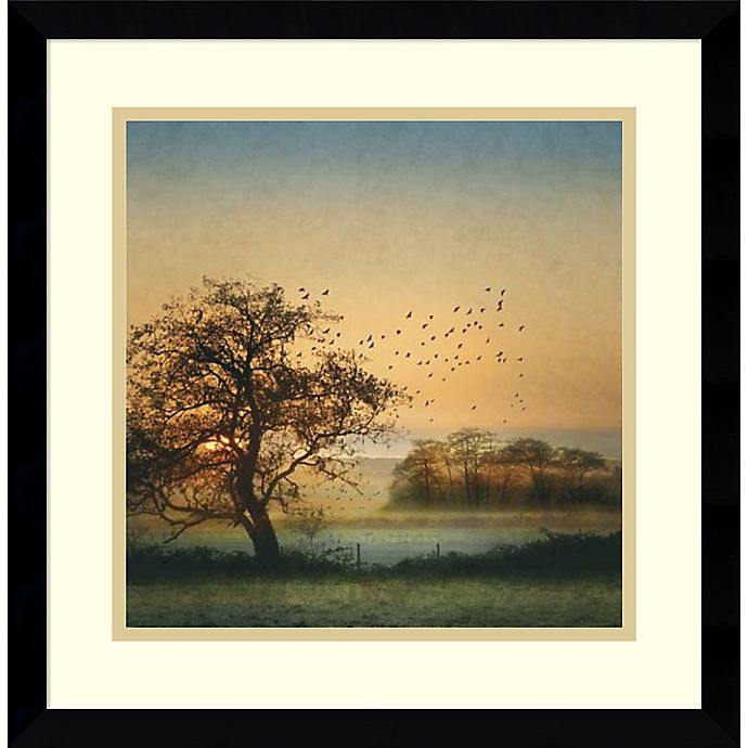 Alternate image 1 for Amanti Art Good By Day Birds 17-Inch Square Framed Wall Art