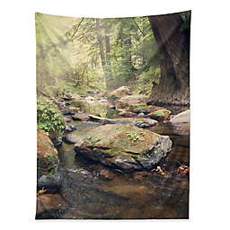 Deny Designs Catherine McDonald Pescadero Creek 80-Inch x 60-Inch Tapestry