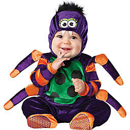 Itsy Bitsy Spider Toddler's Size 12M-18M Halloween Costume in Purple
