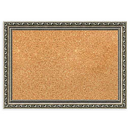 Amanti Art Cork Board with Parisian Silver Frame
