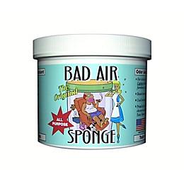 Bad Air Sponge 2lb