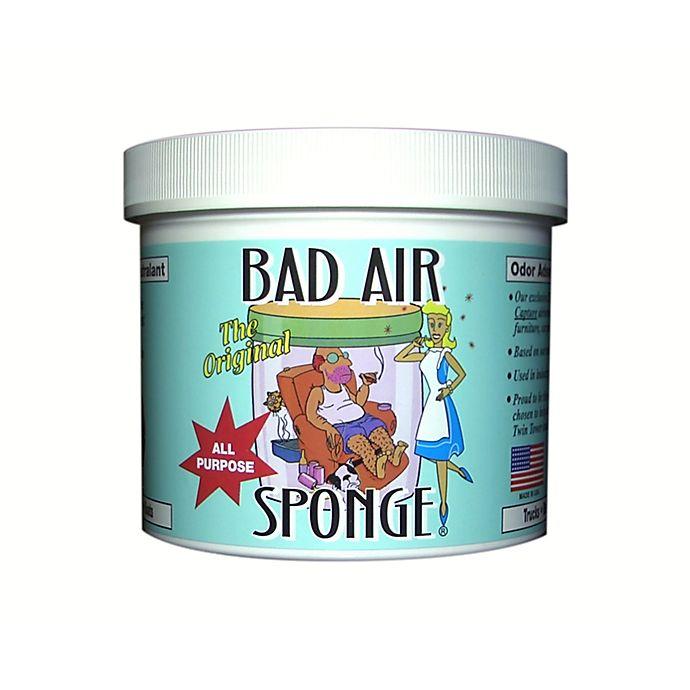 Alternate image 1 for Bad Air Sponge 2lb