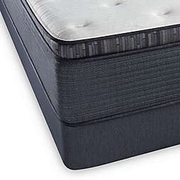 Beautyrest® Platinum™ Spring Grove™ Plush Pillow Top Twin XL Mattress Set