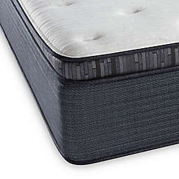 Beautyrest® Platinum™ Spring Grove™ Plush Pillow Top Twin XL Mattress