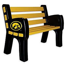 University of Iowa Outdoor Park Bench