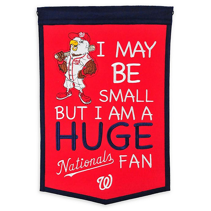 Alternate image 1 for MLB Washington Nationals Lil Fan Traditions Banner