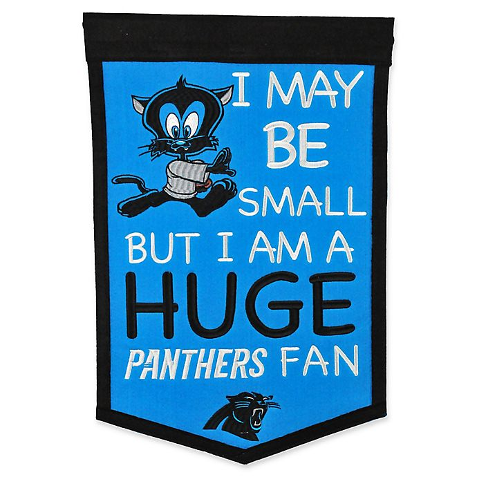 NFL Philadelphia Eagles Lil Fan Banner