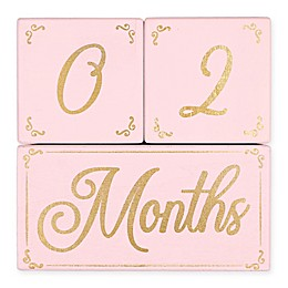 The PeanutShell™ 3-Piece Milestone Block Set in Pink/Gold
