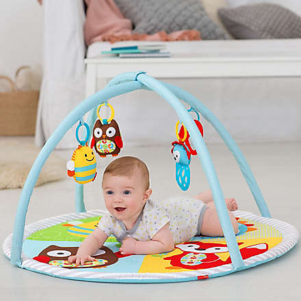 SKIP*HOP® Funscape Activity Gym. Shop Now