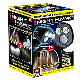 Night Hawk™ 2-Light LED Outdoor Security Light in Black