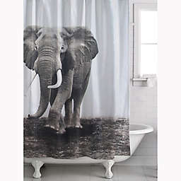 Zarma Shower Curtain In White Black