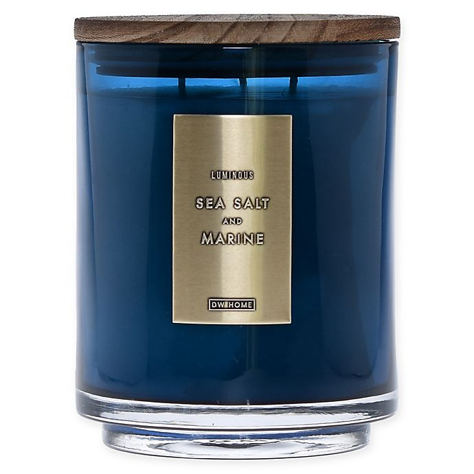 Alternate image 1 for DW Home Sea Salt and Marine Wood-Accent 29 oz. 3-Wick Jar Candle in Blue