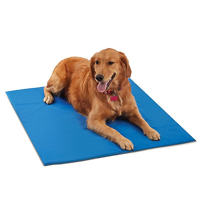 Alternate image 1 for Pawslife™ Extra Large Cool Pad in Blue