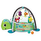 Infantino™ Grow-With-Me Activity Gym & Ball Pit