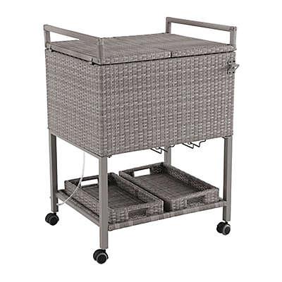 Barrington Outdoor Wicker Patio Cooler Cart