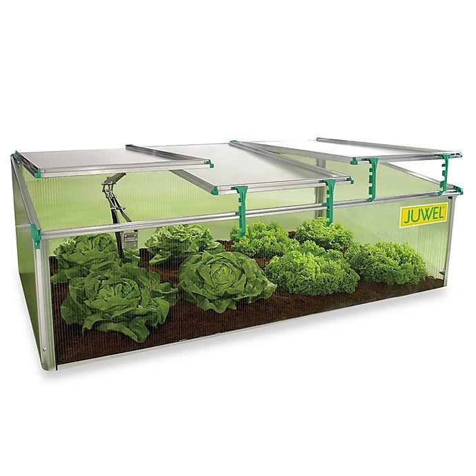 Alternate image 1 for BioStar Premium Cold-Frame 8mm Mini Greenhouse
