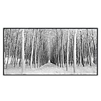 Portfolio Arts Group 58-Inch x 29-Inch Perspective Panel Canvas Wall Art