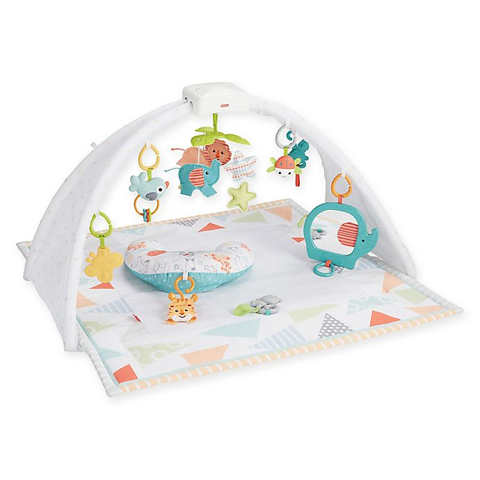 Alternate image 1 for Fisher-Price® Safari Dreams Activity Gym