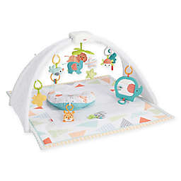 Fisher-Price® Safari Dreams Activity Gym