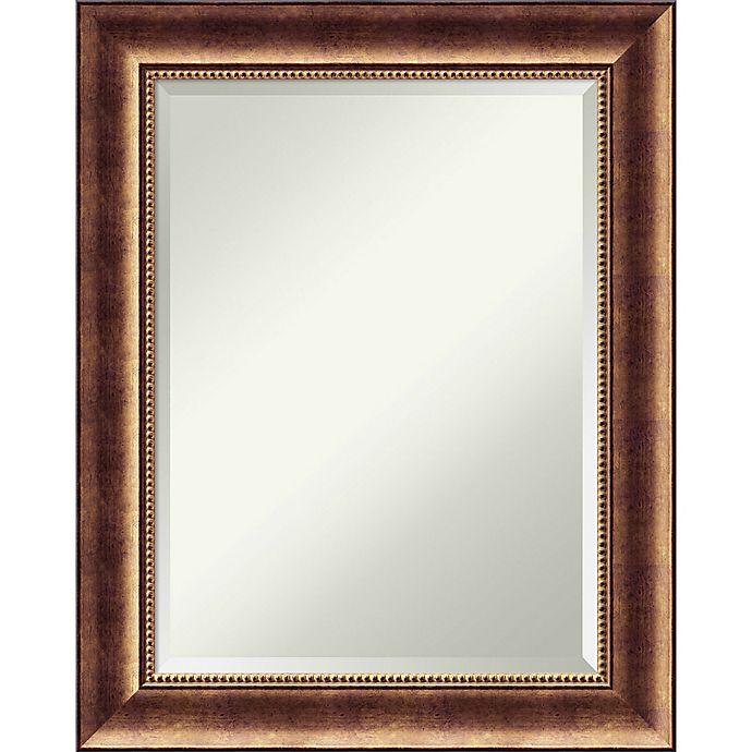 Alternate image 1 for Amanti Art Manhattan 23-Inch x 29-Inch Framed Wall Mirror in Bronze
