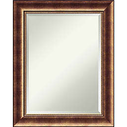 Amanti Art Manhattan 23-Inch x 29-Inch Framed Wall Mirror in Bronze