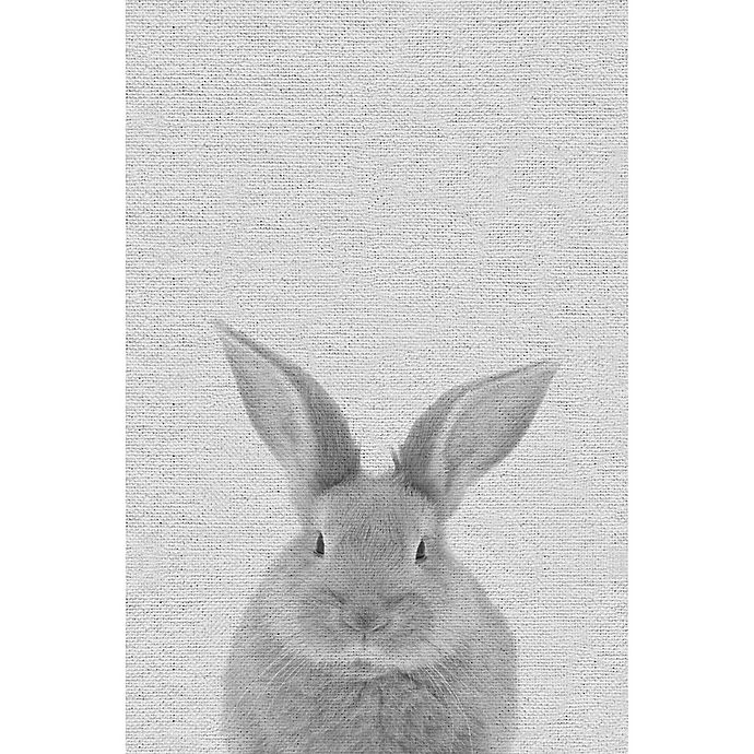 Alternate image 1 for Marmont Hill Chubby Rabbit 24-Inch x 36-Inch Canvas Wall Art