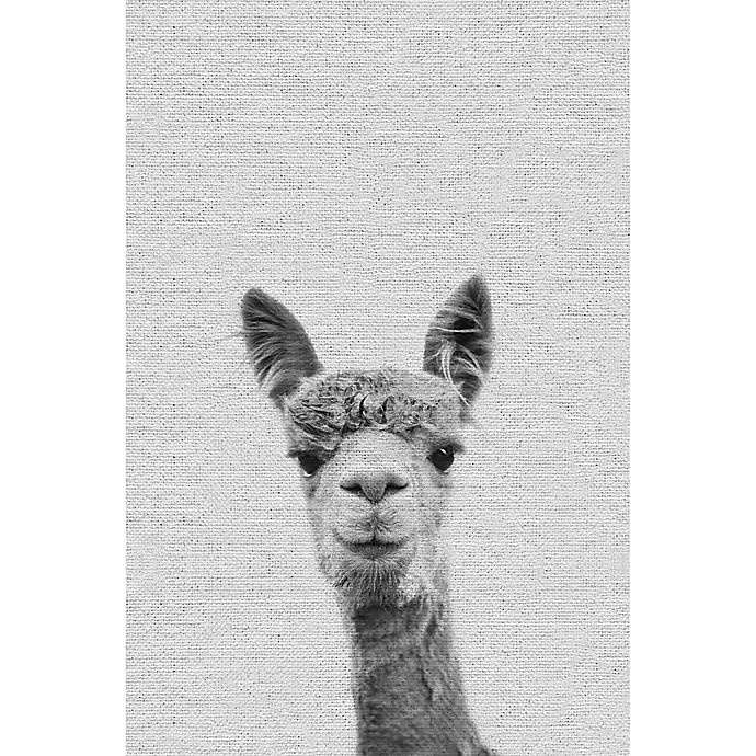 Alternate image 1 for Marmont Hill Llama Face III 24-Inch x 36-Inch Canvas Wall Art