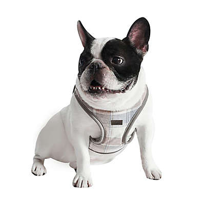 UGG® Santa Fe Dog Harness in Oatmeal